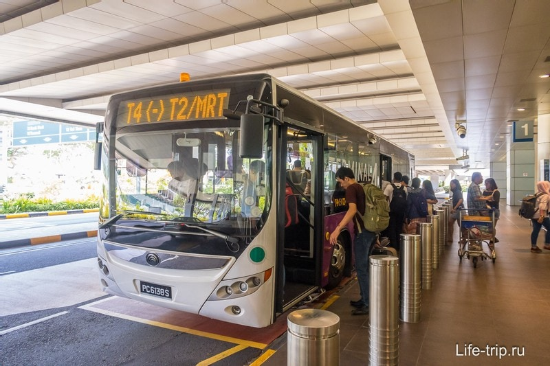 Автобус шаттл между терминалами Т2 и Т4