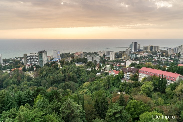 Город Сочи со смотровой дендропарка