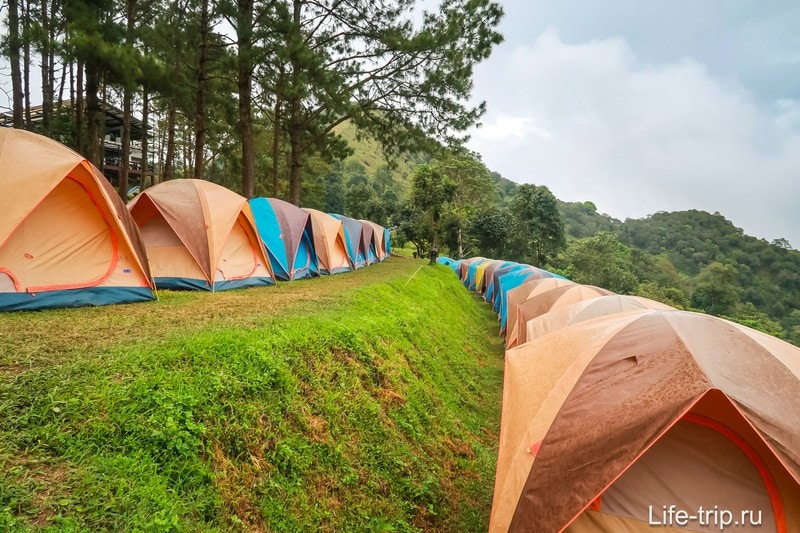 Парк Doi Ang Khang - изюминка севера Таиланда