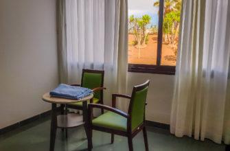 Вид из окна на пальмы