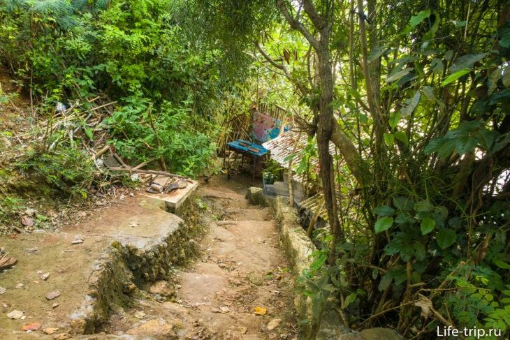 Потом много ступеней через джунгли и горные кафешки