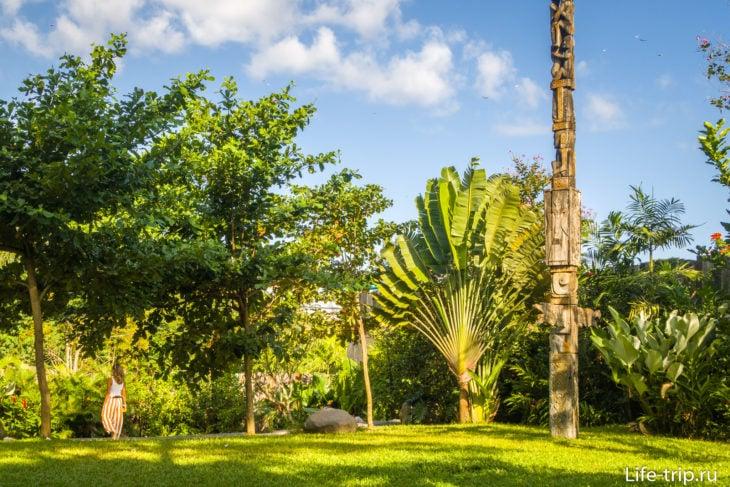 Газоны пострижены, сад вычищен, высажено много разных видов растений