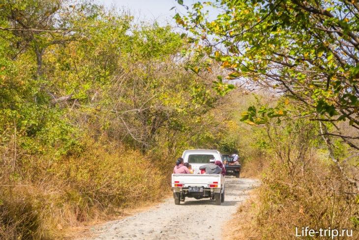 Я попал в какой-то праздник, постоянно попадались машины с хинду, которые ехали в храм или из храма