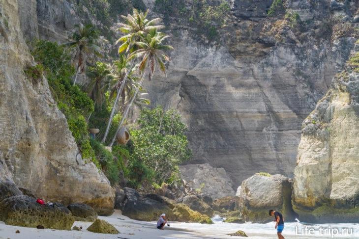 Позади этих пальм - конец лестницы, по которой люди спускаются с утеса на пляж.