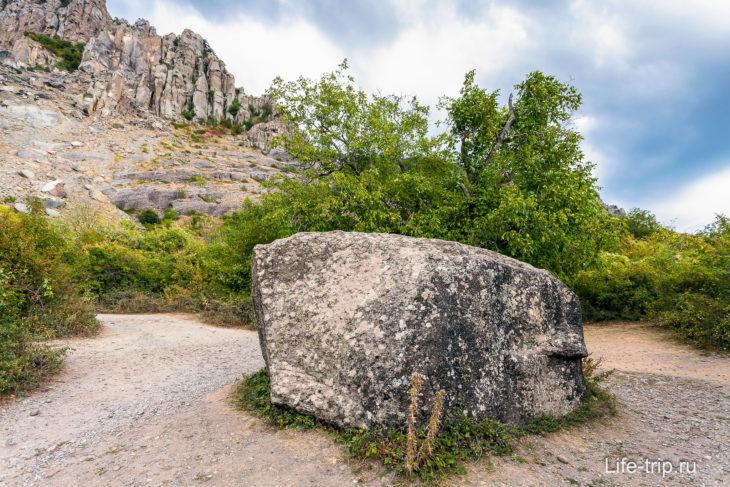 Камень Пуговкина или камень Варлей