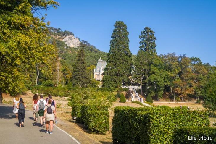 Из-за высоких деревьев дворца почти не видно