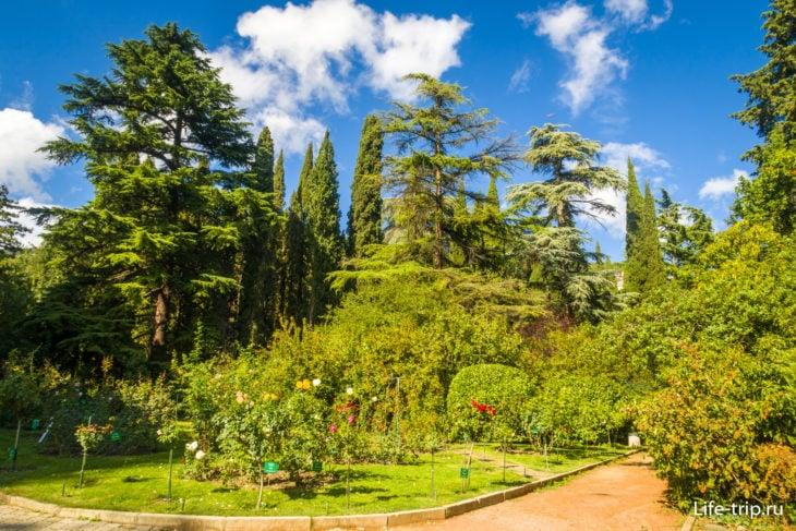 Никитский ботанический сад – цена билета, как добраться