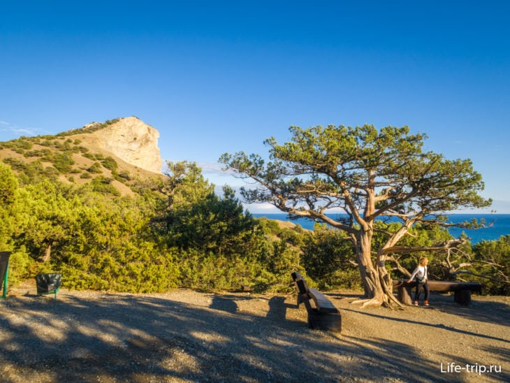 Часто попадаются скамейки, беседки и места для отдыха (но не пикника)