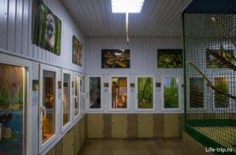 Так выглядит экспозиция экзотических животных
