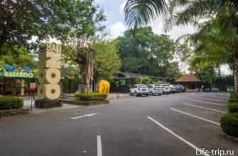 Основная парковка, прямо перед входом в Зоопарк Бали