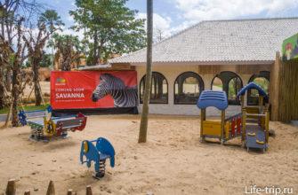 Рядом с саванной - детская площадка и магазин сувениров Zoovenir