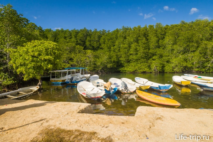 Mangrove Point Lembongan