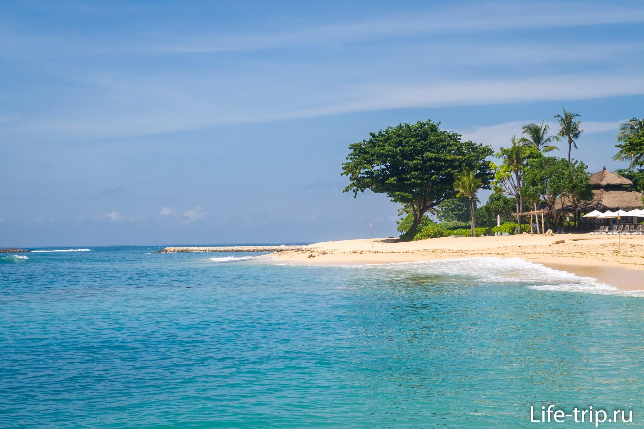 Пляж Саванган на Бали. Одинокое дерево - его визитная карточка.