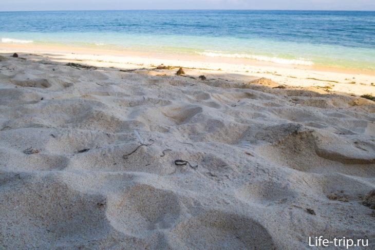 Пляж Томас (Tomas Beach) - песок и камень