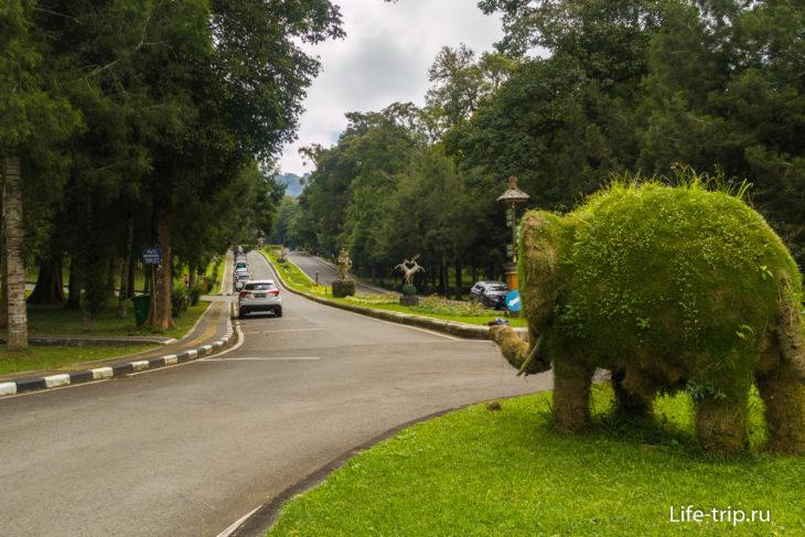 Вид на главную аллею со стороны ворот чанди-бентар
