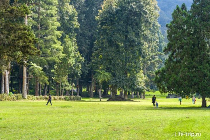 Ботанический сад на Бали - роскошное место для пикника