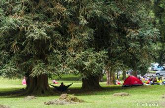 Гамаки и палатки во всех уголках сада