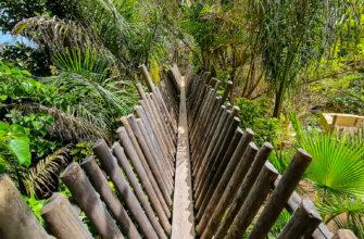 Часть маршрута Jungle Raid