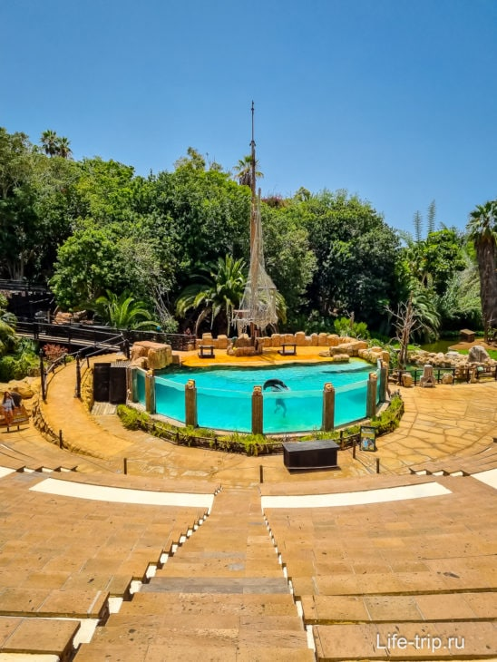Зоопарк Jungle Park, он же – Парк Орлов, развлечение для детей